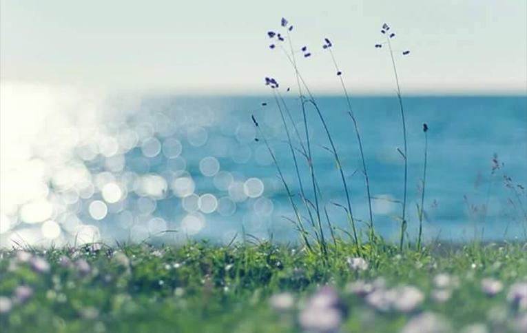 Amo la natura - Inno alla natura - Poesia di Maria Letizia Del Zompo