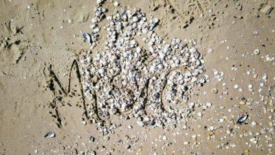 smaterializzare una passeggiata in riva al mare