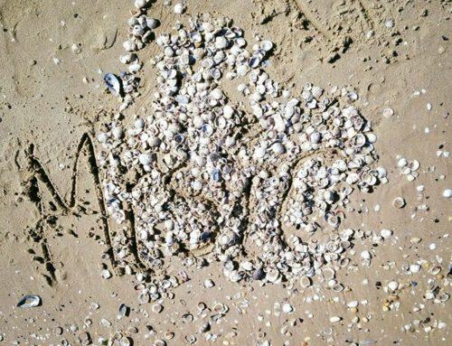 Smaterializzare – una passeggiata in riva al mare
