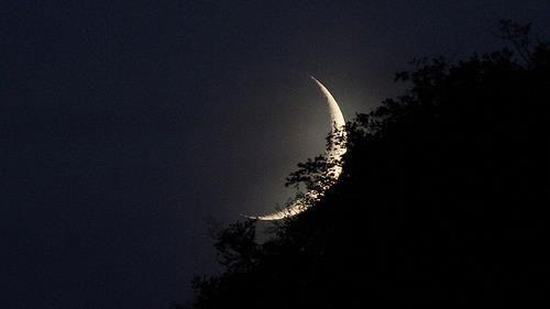 Omaggio alla luna – Poesie, frasi, citazioni, canzoni - Falce di luna
