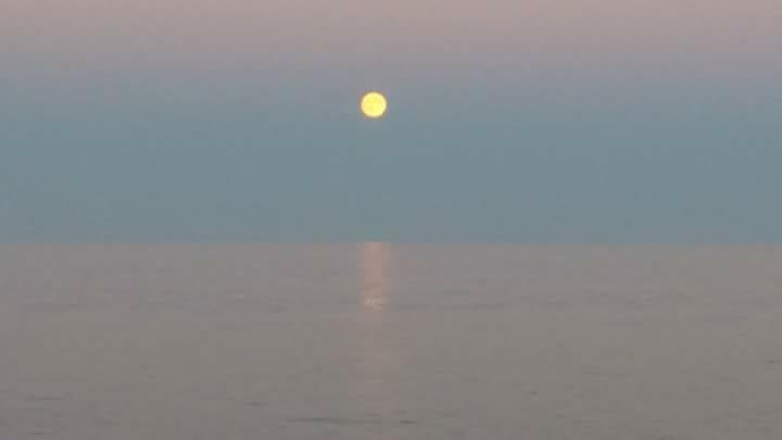 """Omaggio alla luna – Poesie, frasi, citazioni, canzoni - Foto """"Luna piena"""" di Maria Letizia Del Zompo"""