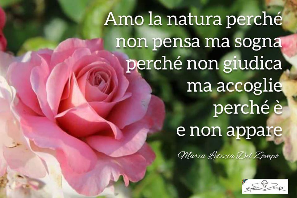 Giornata mondiale della Terra - frasi - Maria Letizia Del Zompo - Amo la natura perché non pensa ma sogna, perché non giudica ma accoglie, perché è e non appare