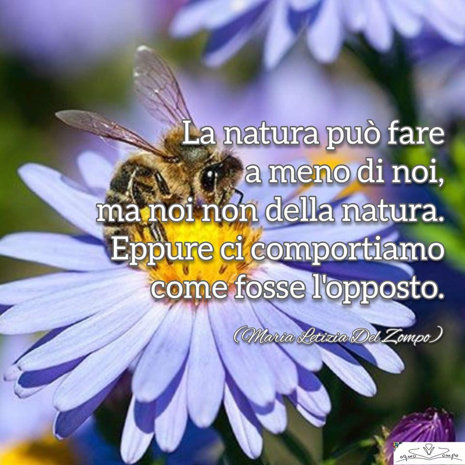 Giornata mondiale della Terra - frasi - Maria Letizia Del Zompo- La natura può fare ameno di noi, ma noi non della natura. Eppure ci comportiamo come fosse l'opposto.