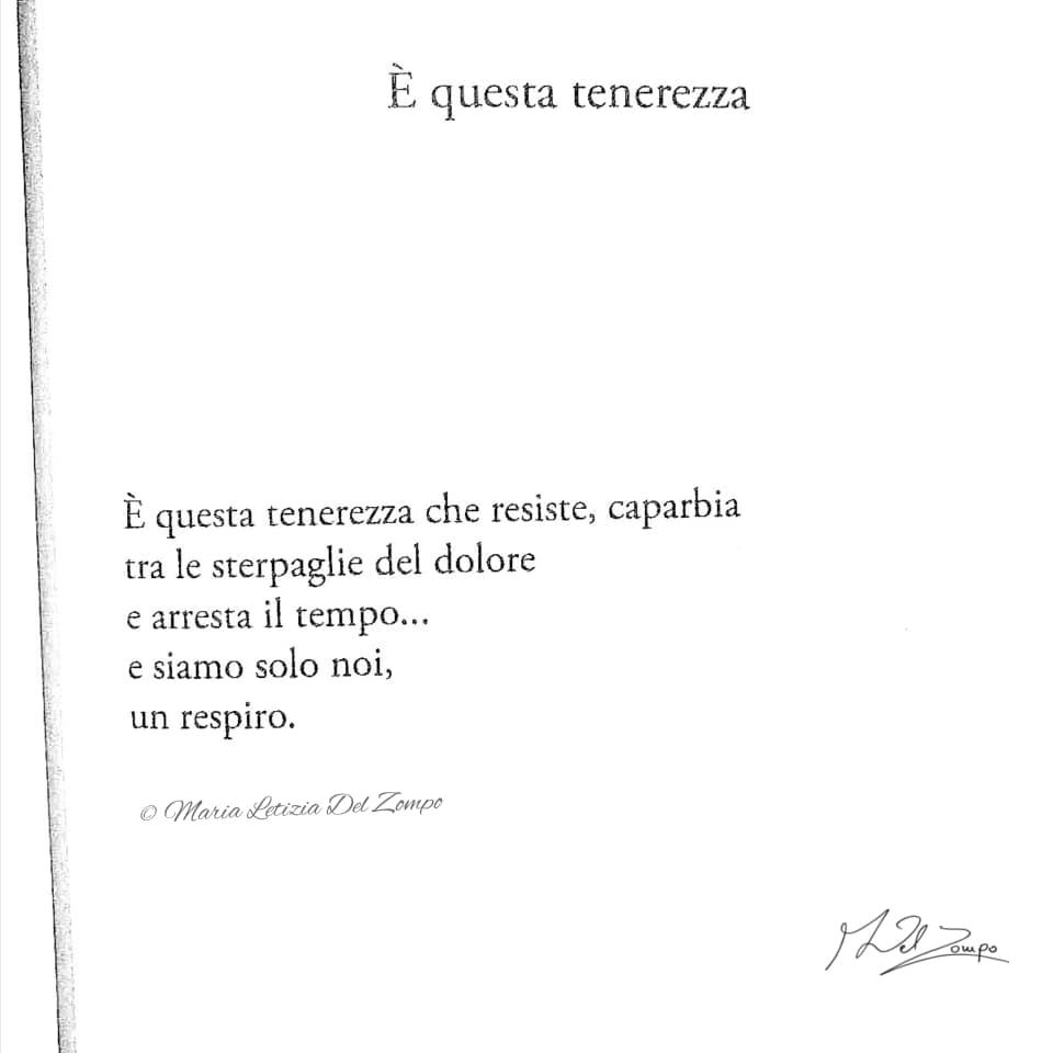 Poesie d'amore - Poesie-damore-brevi-è-questa-tenerezza-Maria-Letizia-Del-Zompo