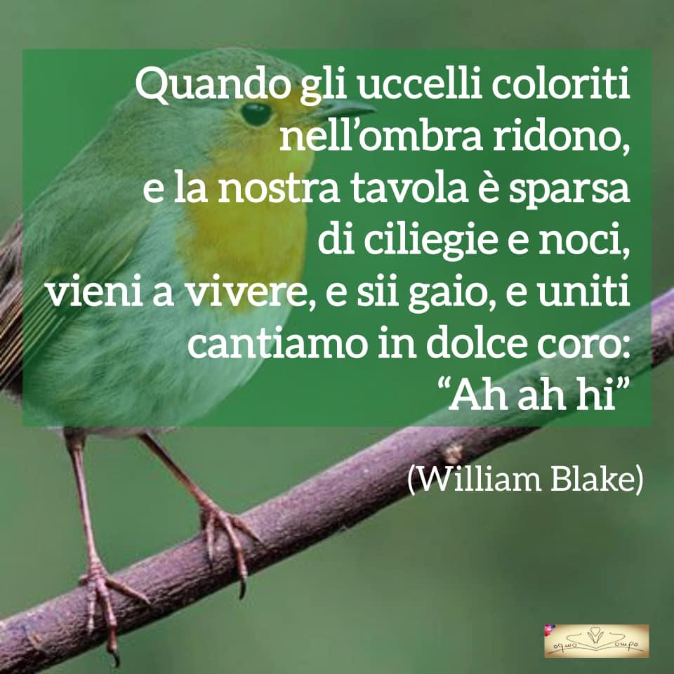 Poesie sulla gioia e la feicità - William Blake