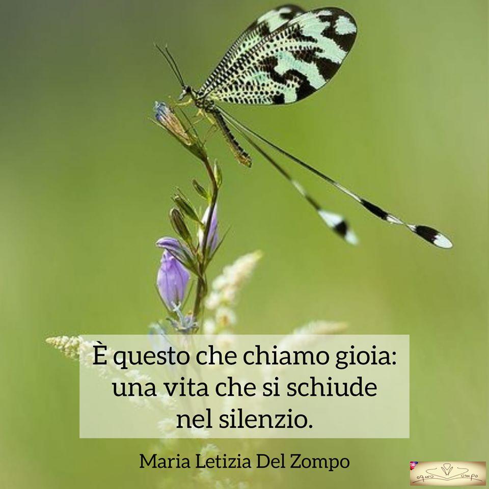 Poesie sulla gioia e la felicità - è questo che chiamo gioia - Maria Letizia Del Zompo