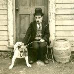 Ho perdonato errori quasi imperdonabili - Charlie Chaplin