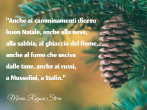 Poesie sul Natale - Anche ai camminamenti dicevo Buon Natale